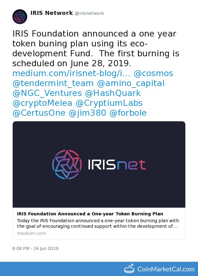 First Token Burn image